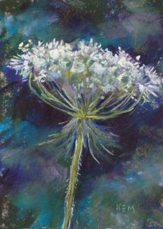 queen annes lace painting - Google Search