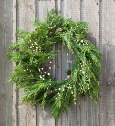 I love things BIG and abundant - generous and full - and that's why I fell for this wreath to decorate one of our doors this Christmas. It's a whopper and looks fabulous as it is, or with fruit and veg wired in, and/or a string or two of battery powered Orientale Lights.