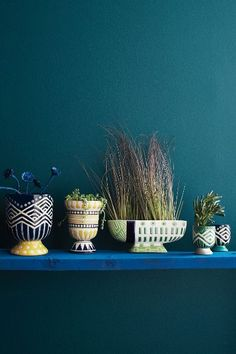 Anivalda Garden Pot - anthropologie.com