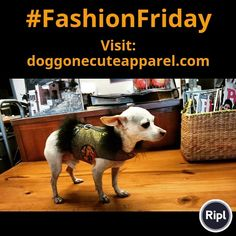 Dog Apparel, Dog Wear, Party Ideas, Gift Ideas, Shopping Mall, Dog Owners, Handmade Items, Lovers, Christian