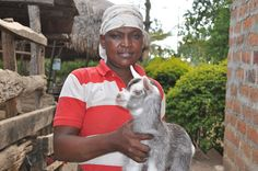 Goats work in mysterious ways. This couple was having some marital issues - but my goat friend was able to help them sort that out by helping provide them with an extra income!