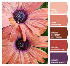 Paint colors from Chip It! by Sherwin-Williams Colour Pallette, Color Palate, Colour Schemes, Color Combinations, Color Me Beautiful, Design Seeds, World Of Color, Color Blending, Color Swatches