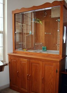 How to make a homemade indoor bird aviary or flight cage for parakeets, budgies, finches, canaries. Repurpose old furniture. Parakeet Cage, Budgie Parakeet, Budgies, Parrots, Cockatiel, Vivarium, Finch Cage, Flight Cage, Diy Bird Cage