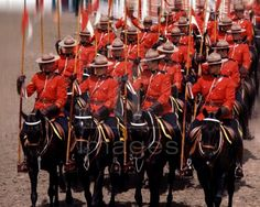 Royal Mounted Police Canada - Bing Images I Am Canadian, Brothers In Arms, Police Uniforms, Western Canada, Canada Day, Quebec City, Best Vacations, Law Enforcement, Beautiful Horses