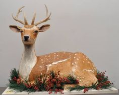 This is a deer-shaped cake!!! by Sylvia Weinstock