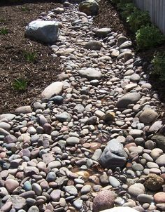 Dry stream beds are a great way to combine a focal point in a Xeriscape garden with a way to drain water away from the house. Hillside Landscaping, Landscaping With Rocks, Landscaping Ideas, Backyard Stream, Stream Bed, Dry Creek Bed, Dry River, Natural Pond, Tall Plants