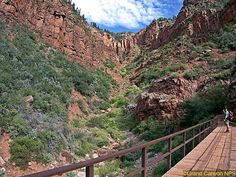 """Family Hikes On Grand Canyon Backcountry Trails. Read more about this and other park trails in """"Hittin' the Trail: Day Hiking Grand Canyon National Park."""""""