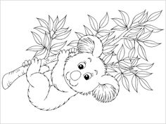 Koala Colouring In. Five colouring in pages for Australia Day. | Kids To Do http://www.kidstodo.com.au/colouring-in-australia-day