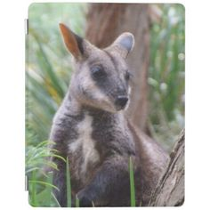 Rock Wallaby iPad Cover