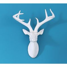 At the French Bedroom Company, we've got a vibrant collection of French wall art & decor just waiting to be discovered. Wall Accessories, Decorative Accessories, White Deer Heads, Luxury Mirror, Stag Head, Modern Colors, House And Home Magazine, Wall Art Decor, Canvas Wall Art