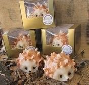 The soap room Cold Process Soap Novelty Hedgehogs Sodium Hydroxide, Cold Process Soap, Hedgehogs, Castor Oil, Fragrance Oil, Soap Making, Coconut Oil, Hand Painted, Room