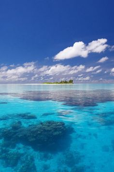Barbados- beautiful waters
