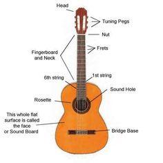 guitar diagram music dance pinterest diagram guitars and rh pinterest com diagram of a guitar neck diagram of a guitar neck