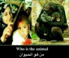 من هو الحيوان /  الدين المزيف