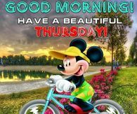 Good Morning! Have A Beautiful Thursday!