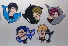 Free! - Iwatobi Swim Club, haruka nanase, haru nanase, haru, free!, iwatobi, makoto tachibana, makoto, tachibana, nagisa hazuki, nagisa, hazuki, rei ryugazaki, rei, ryugazaki, rin matsuoka, matsuoka, rin, nanase, dolphin, shark, killer whale, orca, pinguin, butterfly