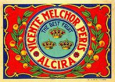 Naranjas Vicente Melchor Peris.  Alzira.