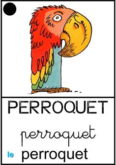Le perroquet Montessori, Teaching, School, Alphabet, French Tips, Alpha Letter, Kids, Learning, Education