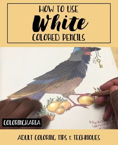 How to Use White Colored Pencils