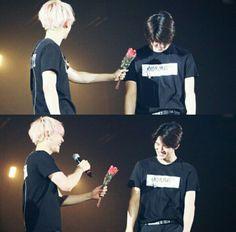 baek giving a rose to shy hunnie Chanyeol, Kyungsoo, Exo 12, Exo Chanbaek, Exo Couple, Exo Luxion, Xiuchen, Cute Korean Boys, Exo Memes