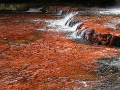 Quebrada de Jaspe, La Gran Sabana, Parque Nacional Canaima, Venezuela.