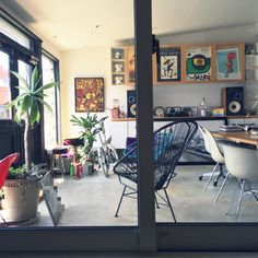 SANSANさんの、植物,ガレージ部屋,JBL,スピーカー,イームズ,ミッドセンチュリー,コンクリートの床,アンティーク,アガベ,グリーン,アームシェル,ハーマンミラー,アカプルコチェア,ミッドセンチュリー家具,ガレージ,ガレージだったはずの場所,玄関/入り口,のお部屋写真