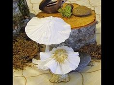These adorable mushrooms are easy to make out of tissue paper. In this video I used a paper napkin, which worked almost as well. Aprenda fazer cogumelos com . Paper Flowers Craft, Flower Crafts, Diy Flowers, Flower Diy, Mushroom Crafts, Mushroom Art, Crepe Paper, Tissue Paper, Paper Plants