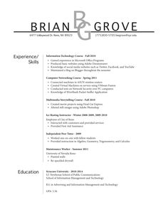 What Does Professional Resume Look Like Templates | Resume Templates