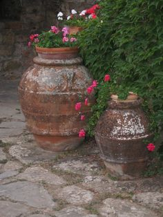 antique-Italian-olive-jars.jpg wonderful site --landscape architect