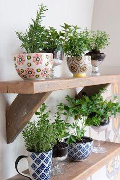 Une cuisine verdoyante – Cocon de décoration: le blog