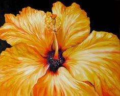 """""""Yellow Hibiscus April  by M Baldwin"""" by Marcia Baldwin: From My Garden Series, this lovely Yellow Hibiscus blossom was a beauty this early spring. I had to try a capture that beauty on canvas. This print is directly from my original oil painting complet..."""