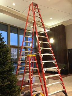 Setting up for the holidays, from 6 to 16 feet.