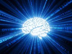 Se trata de la primera vez en la historia que se consigue. Profundizamos en el proyecto 'Brainternet'.