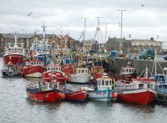 Dublin Fishing Charters - Coach & Minibus Hire Dublin - O'Connors Coach & Minibus Hire Service Dublin - Ireland