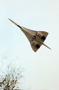 Concorde made its maiden flight in 1969....my Dad loved this plane!