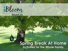 Spring Break…. for some it means packing up the car and kids and heading off to Florida or Grandmas.  But, for those families staying at home, there are lots of activities to make Spring Break special and fun, check out the blog to get a little Spring Break inspiration.