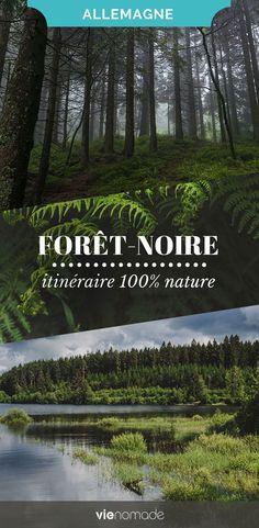 Road trip en Allemagne: un guide pour un itinéraire 100% nature en forêt-noire, avec bonnes adresses et idées de randonnées! #allemagne #foretnoire #roadtrip #randonnee #rando #nature