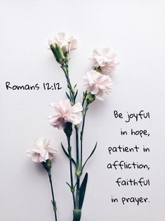 Be Joyful in Hope♥️ hope faith love- madewithhopebyxiom IBelieve Biblical Quotes, Scripture Quotes, Bible Scriptures, Faith Quotes, Positive Bible Verses, Cute Bible Verses, Best Bible Quotes, Powerful Scriptures, Bible Verses For Women
