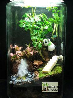 Panda Habitat Terrarium. Like our design, follow us on our facebook page. Panda Habitat, Terrariums, Facebook Sign Up, Habitats, Gardening, Crafts, Design, Manualidades, Lawn And Garden