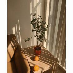 44 ideas for wallpaper minimalistas bege Cream Aesthetic, Aesthetic Rooms, Brown Aesthetic, Aesthetic Photo, Aesthetic Pictures, Aesthetic Indie, Pastel Wallpaper, Iphone Wallpaper, Korea Wallpaper