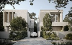 Martin Court Residences by Davidov Architects - Melbourne, Victoria - The Local Project Architects Melbourne, Cedar Shutters, Concrete Finishes, Solar Shades, Entry Doors, Design Firms, Interior Architecture, Residential Architecture, Exterior Design
