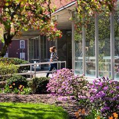 Campus is looking wonderful today! We hope everyone is having a great week! #SyracuseU