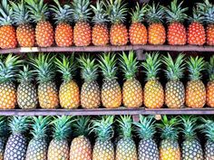 Rows of Freshly Picked Pineapples Await Purchase at a Farmer's Market