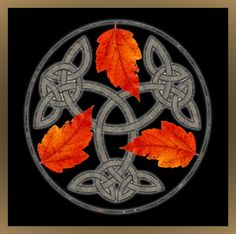 Autumn Leaves and Celtic Knot pop up