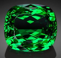 Gems:Faceted, Exceptional Gemstone: Tsavorite Garnet - 16.88 Ct.. Komolo Mine,20 Km South of Komolo Village, Lelatema Mts, Simanjiro D...