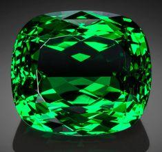 Gems:Faceted, Exceptional Gemstone: Tsavorite Garnet - 16.88 Ct.. Komolo Mine,20 Km South of Komolo Village, Lelatema Mts, Simanjiro D...