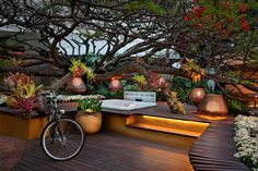 Decoração com árvores e luzes. Charmosa e elegante. https://www.homify.com.br/livros_de_ideias/30589/10-jardins-estilo-espaco-lounge-para-relaxar