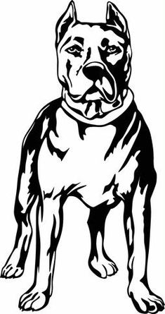 Pit Bull Standing Vinyl Cut Out Decal, Sticker - Choose your Color and – Vinyl Ink Design