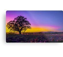 Gorgeous Sunrise Colours - Metcalf, Victoria Metal Print