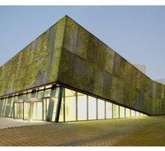Un nuevo hormigón biológico permitirá construir edificios con fachadas vivas  Desarrollado por científicos de la UPC.